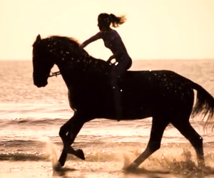 beach, equestrian, and gallop image