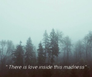 grunge, madness, and quote image