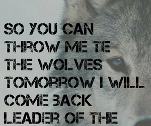 wolf, bmth, and throne image
