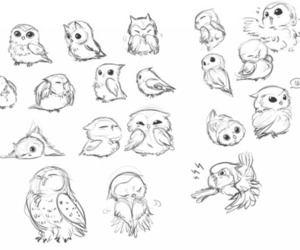 draw, owl, and cute image