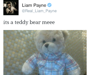 teddy bear, tweet, and funny moments image