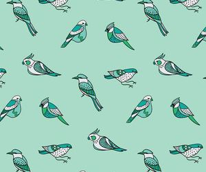 birds and wallpaper image
