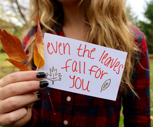 fall, tumblr, and autumn image