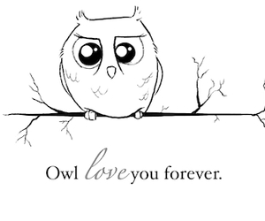 owl and quote image