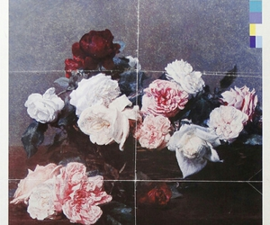 new order image