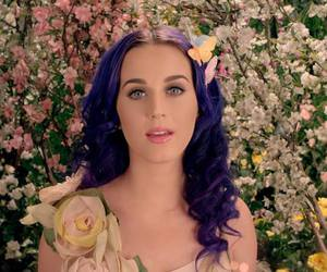 celebrities and katy perry image