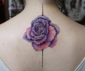 back, purple, and rose image