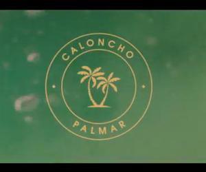 caloncho image
