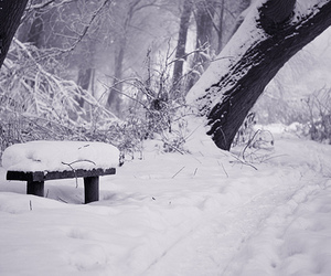 december, photography, and snow image