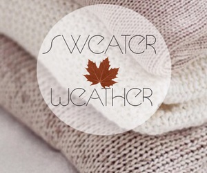 autumn, fall, and sweater weather image
