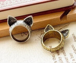 ring, cat, and rings image