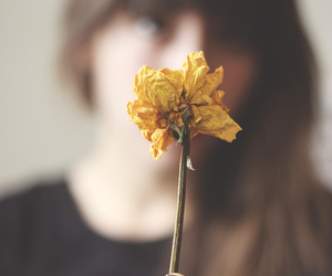 girl, flowers, and food image