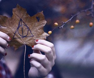 harry potter, leaf, and sign image