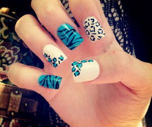 blue, nails, and zebra image
