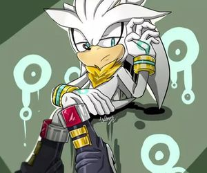 Sonic the hedgehog and silver the hedgehog image