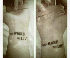 die, follow, and wrists image