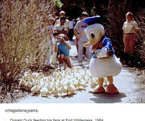 disney, donald duck, and tumblr image