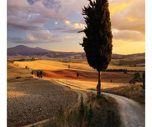 countryside, sunset, and italian image