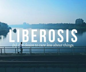 words, quotes, and liberosis image