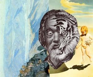 art, tiger, and beautiful image