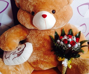 bear, gift, and lovely image