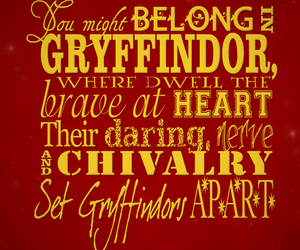 gryffindor, harry potter, and hermione granger image