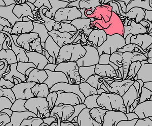 elephant, illustration, and pink image