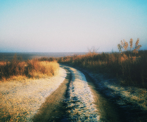 road, nature, and vintage image