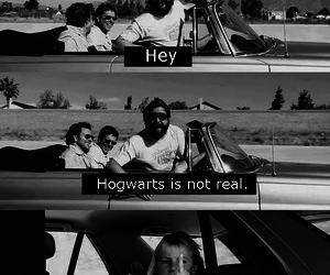 fun, movie, and harry potter image