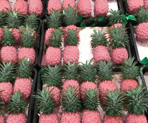 pink and pineapple image