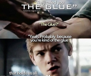 newt, the maze runner, and the glue image