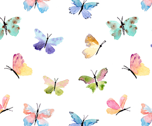 background, butterflies, and pattern image