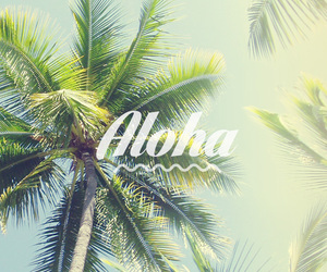 Aloha, summer, and wallpaper image