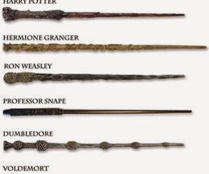 dumbledore, harry potter, and hermione granger image
