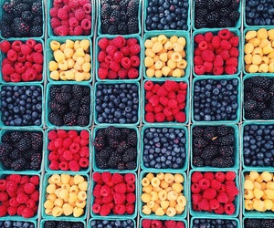 berries, blueberry, and classy image