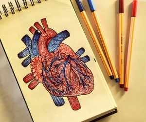 art, colors, and heart image