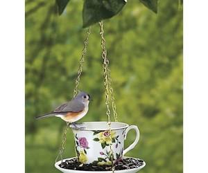 bird, creative, and food image