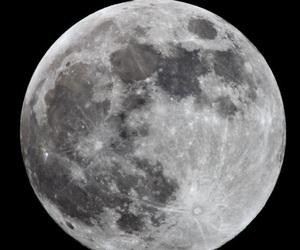 beautiful, night, and luna image
