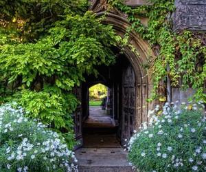 garden, hogwarts, and university image