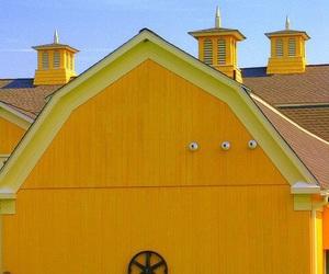 barn and yellow image