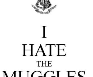 harrypotter, quotes, and tumblr image
