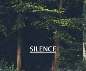 forest, silence, and nature image