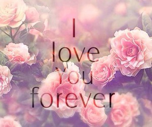 flowers, I Love You, and roses image