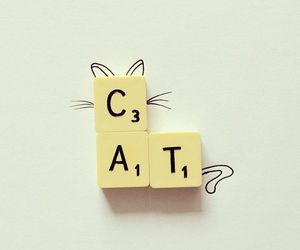 cat and scrabble image