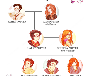 harry potter, hogwarts, and james potter image