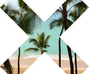 beach, summer, and x image