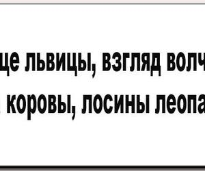 funny russian quotes