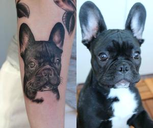 baby, baby boy, and bulldog image