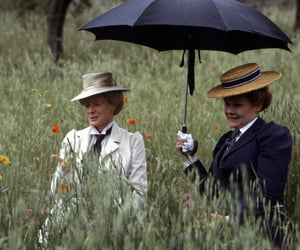 a room with a view, judi dench, and maggie smith image