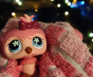 littlest pet shop, lps, and owl image
